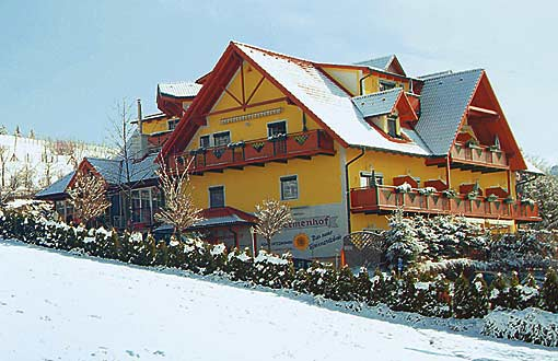 Loipersdorf Thermenhotel Thermenhof Familie Puchas