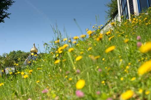 Erholung im Rogner Bad Blumau
