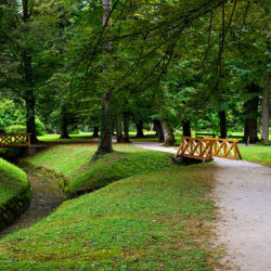 Entspannung finden im Park rund um die Therme Dobrna